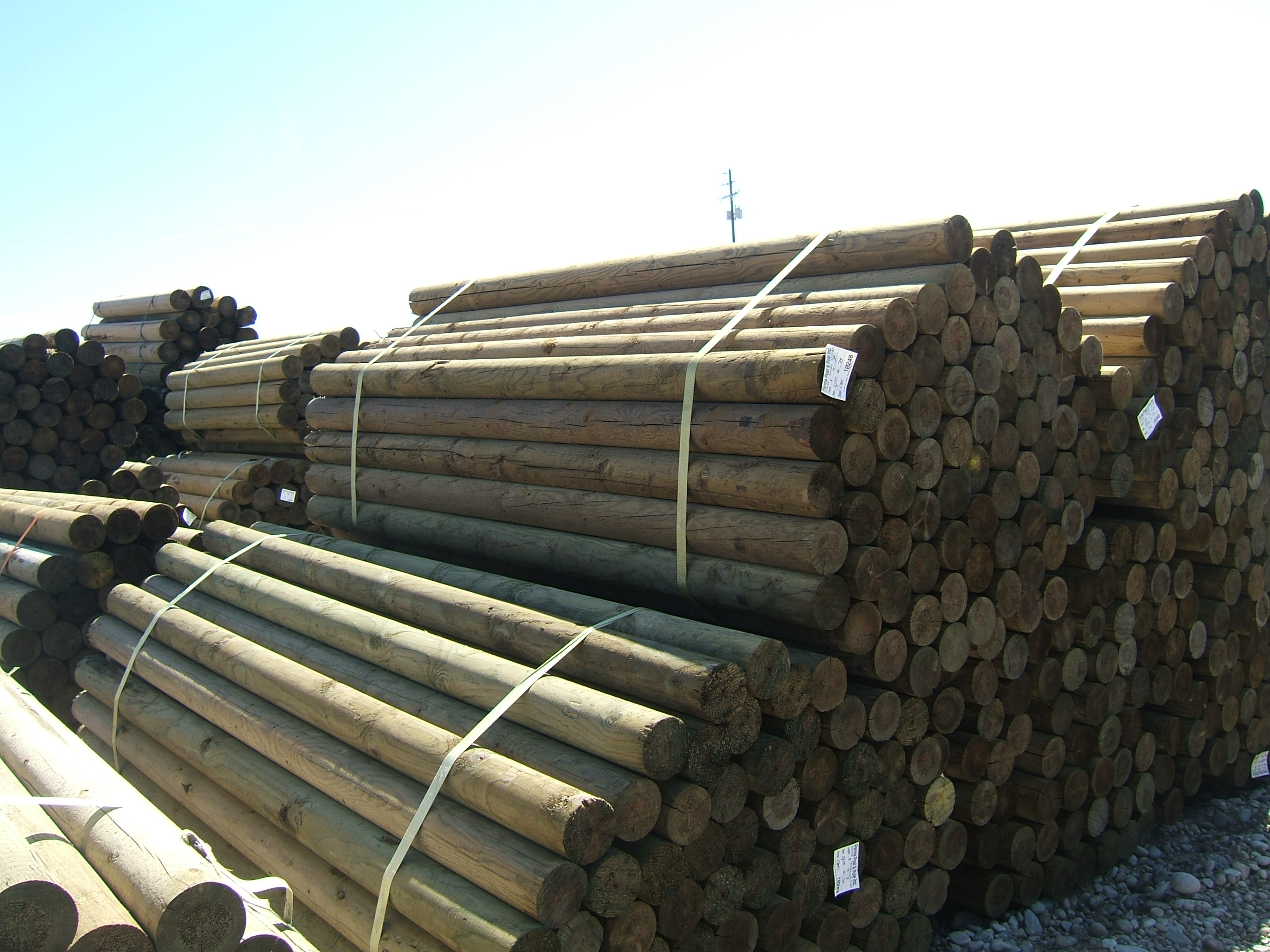 Agricultural Fencing Pressure Treated Fences Posts